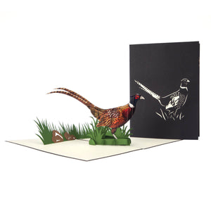 Pheasant Pop Up Card