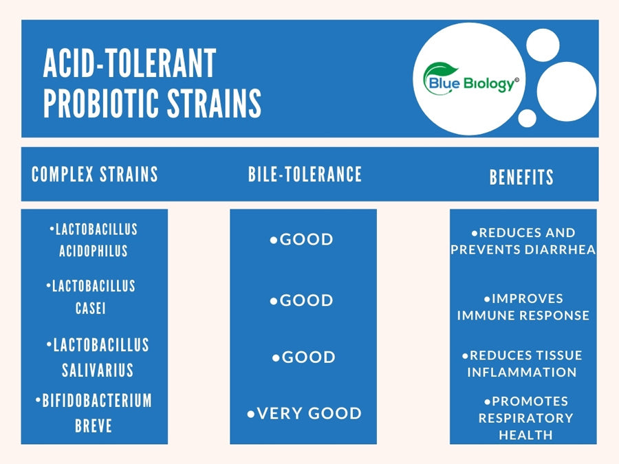 Infographic showing some of the most acid-tolerant probiotic strains for dogs