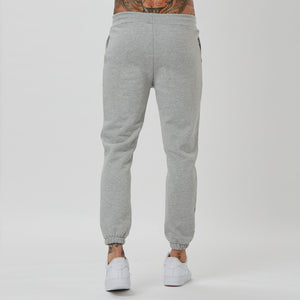 Back fit of mens branded joggers in grey