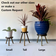 Load image into Gallery viewer, Modern Plant Stand Three Leg Stool Choose Finish by CW Furniture Wood Indoor Flower Pot Base Display Holder Solid Wooden Kids Chair Table Minimalist