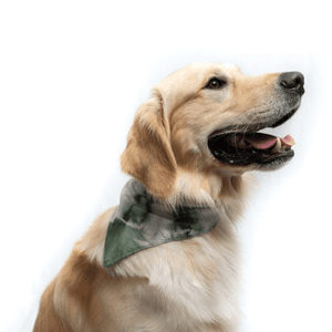 Open image in slideshow, Woven Pet Bandanas