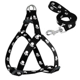 Paw Print Small Dog Harness and Leash