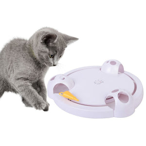 Cat Play Teaser Plate Mice Catch Toy