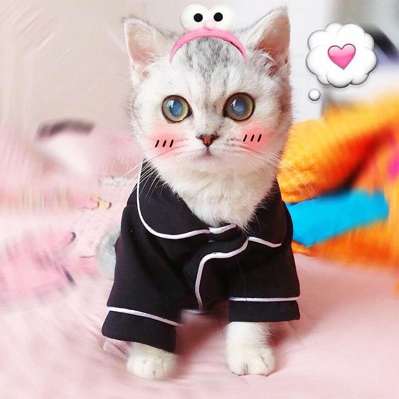 Warm Pet Clothing for Cat Clothes