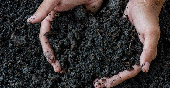 Humic and Fulvic Acid - The Missing Link
