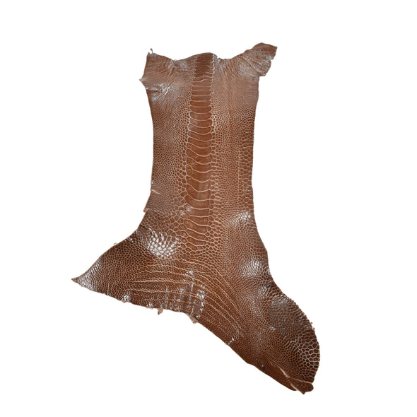 "Ostrich Leg Skins, 12""-16"", 2-3 oz, Glazed, Copper Brown"
