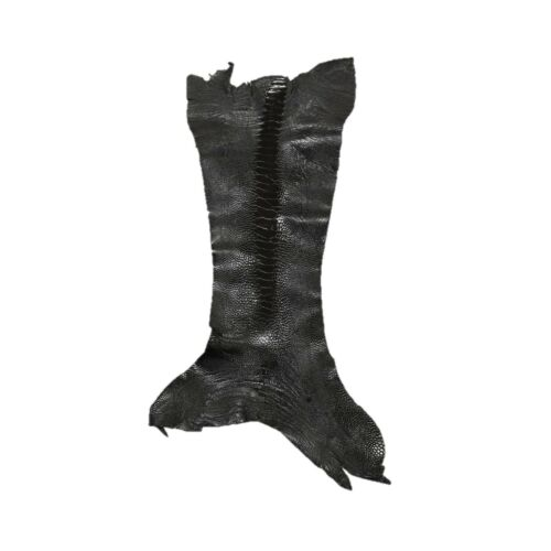"Ostrich Leg Skins, 12""-16"", 2-3 oz, Glazed, Ink Black"