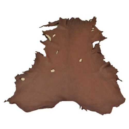 Chocolate Buckskin Deer Hides, 12 Square Foot / Hide 7 / 4-5oz