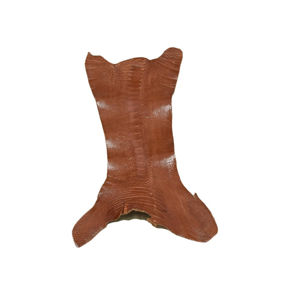 "Ostrich Leg Skins, 12""-16"", 2-3 oz, Glazed, Chestnut Brown"
