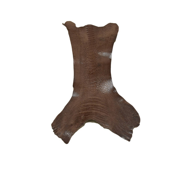 "Ostrich Leg Skins, 12""-16"", 2-3 oz, Glazed, Chocolate Brown"