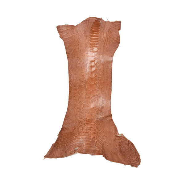 "Ostrich Leg Skins, 12""-16"", 2-3 oz, Glazed, Adobe Brown"