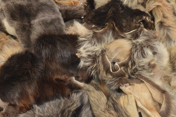 Fur Scrap Fox Coyote Raccoon Beaver craft pieces 1 pound mix Large Skins,