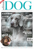 Edition Dog: Issue 5 now available for preorder