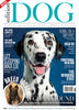 Issue 8 Edition Dog Magazine