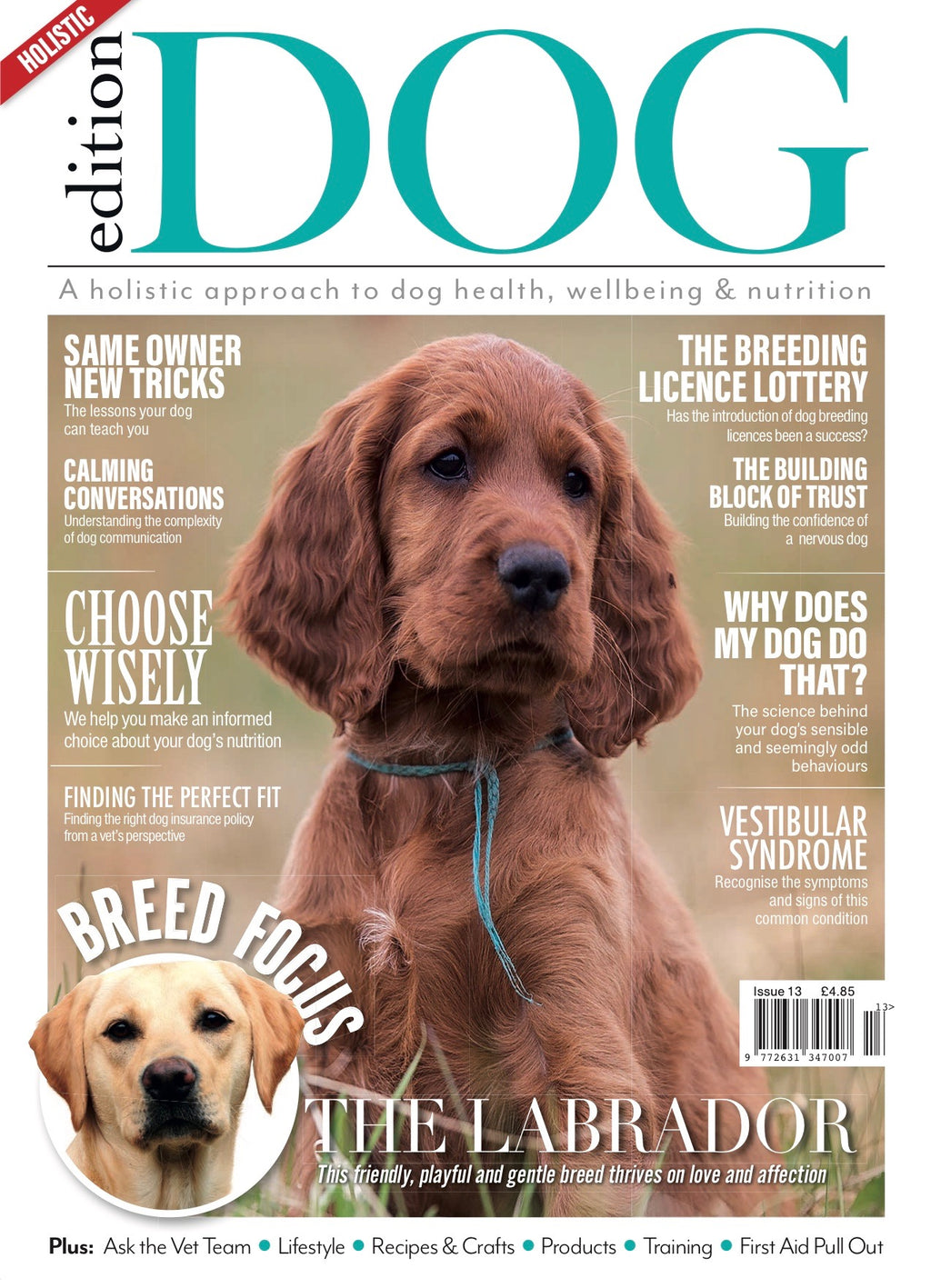 Issue 13 Edition Dog Magazine