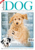 Issue 14 Edition Dog Magazine