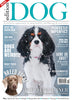 Issue 16  Edition Dog Magazine