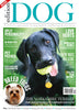 Issue 17  Edition Dog Magazine