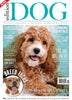 Issue 22 Edition Dog Magazine