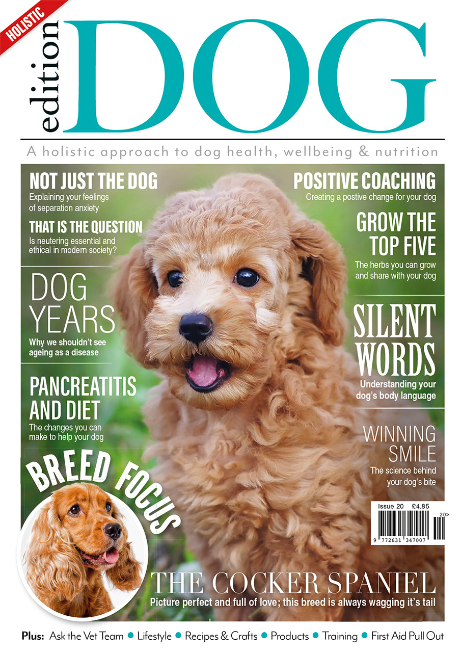 Issue 20  Edition Dog Magazine
