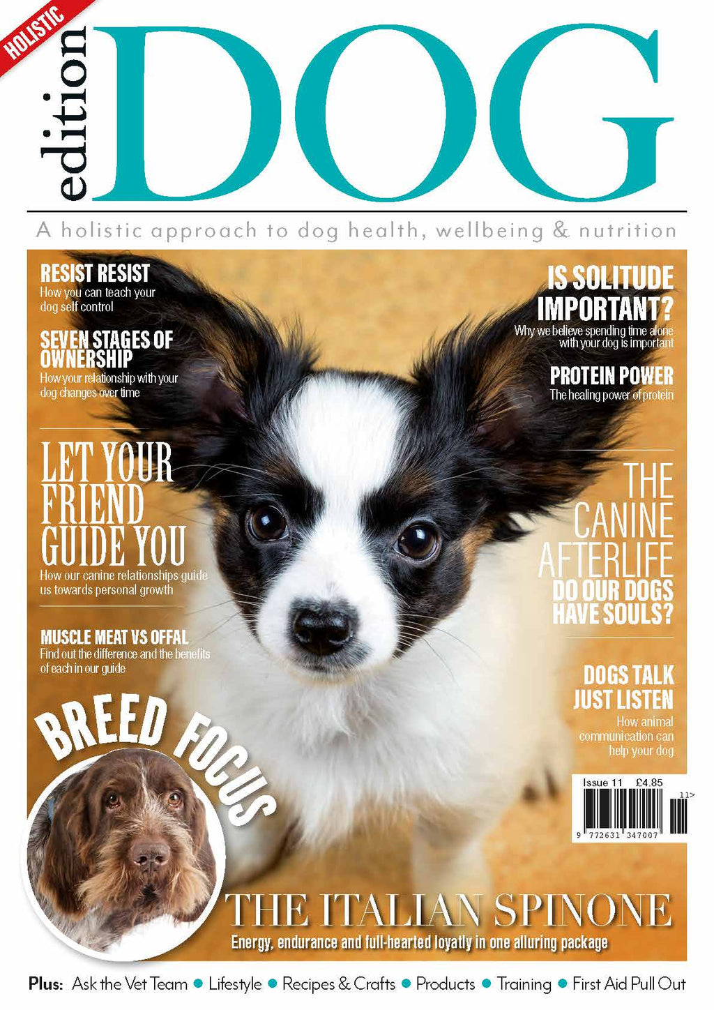 Issue 11 Edition Dog Magazine