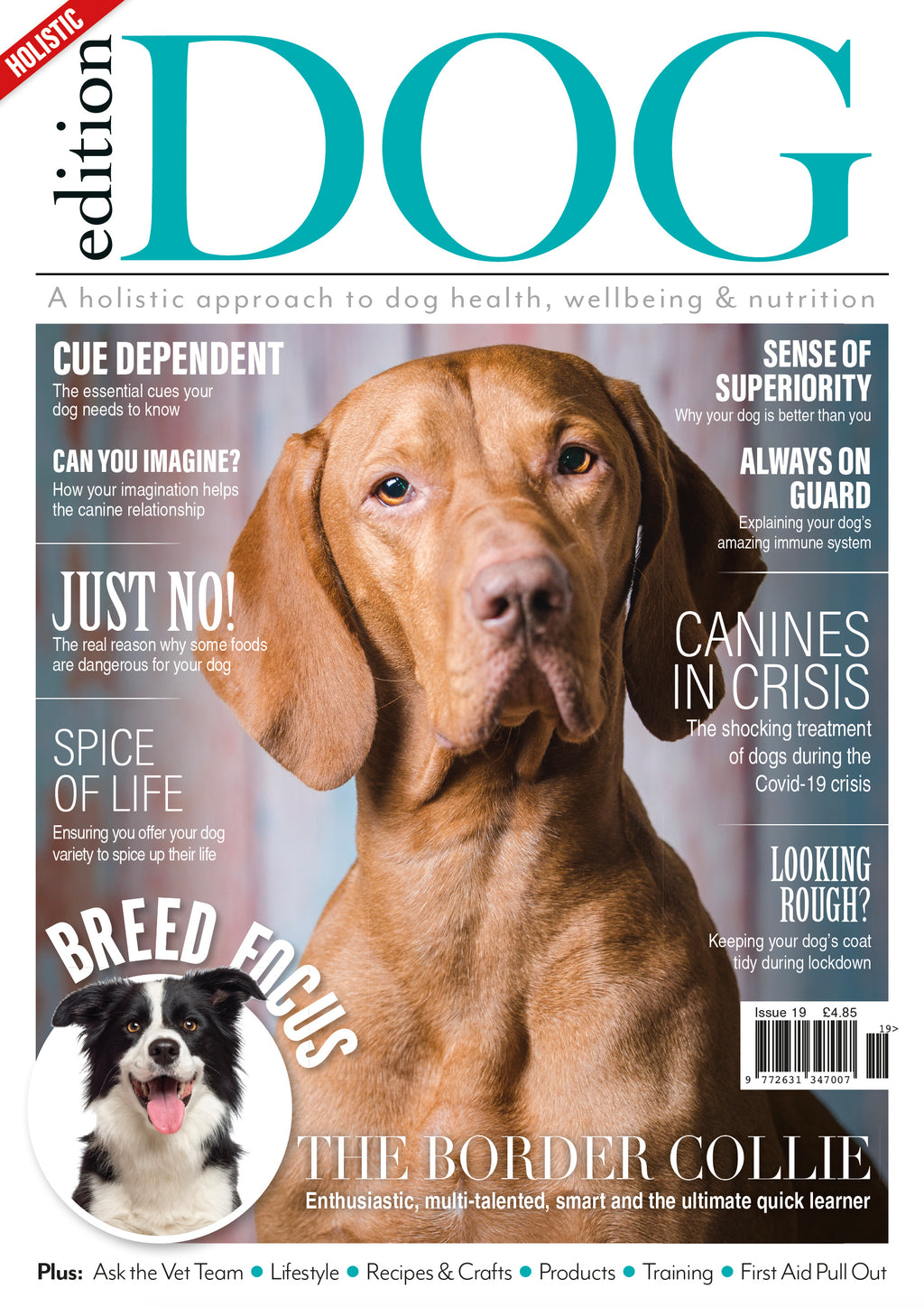 Issue 19  Edition Dog Magazine