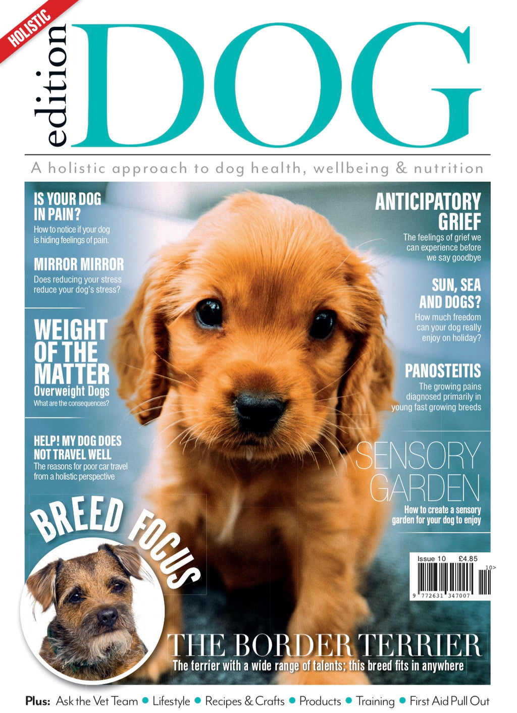 Issue 10 Edition Dog Magazine