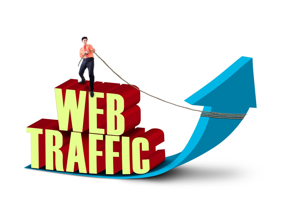 1 Month Website Traffic