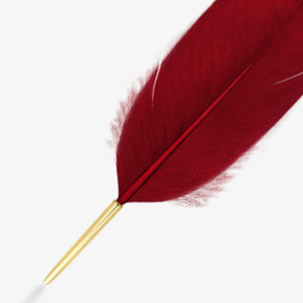 S.Leaf Feather Brooch