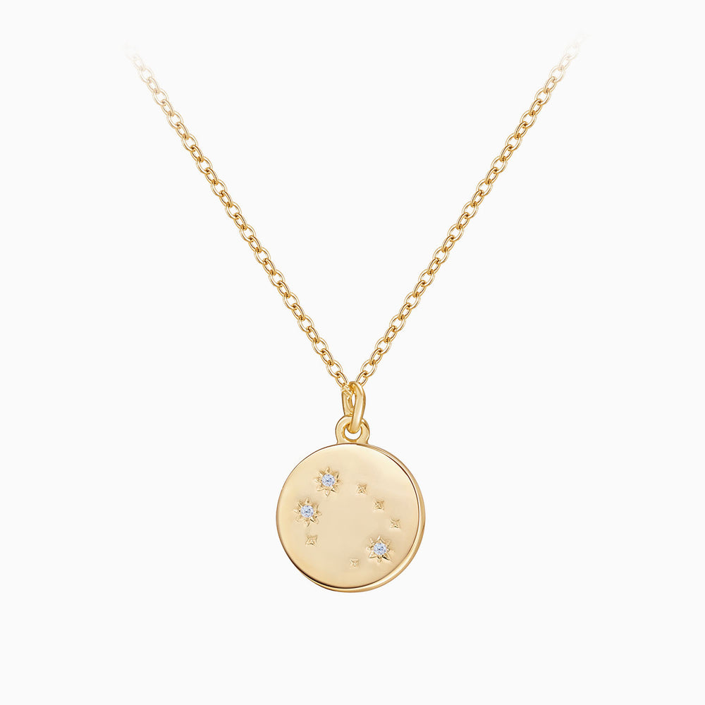 dainty Rose Gemini Zodiac Coin Necklace gift ideas