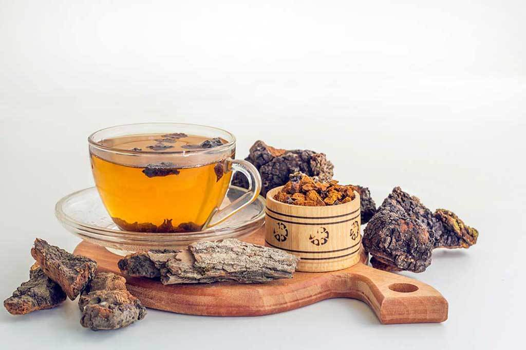 The Healing Powers of Medicinal Mushrooms & What Kinds Are Beneficial