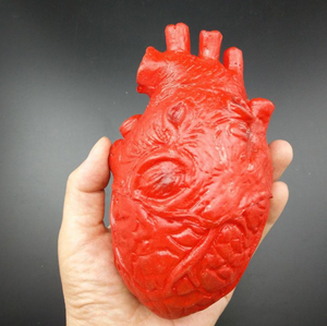 Life-Sized Human Heart Decoration
