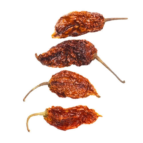 Ghost Chile (Bhut Jolokia), Dry