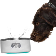 Toadfish Non-Tipping Dog Bowl Teal