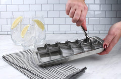 Endurance Ice Cube Tray - Traditional