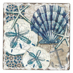 Absorbent Stone Coaster - Tide Pool Shells