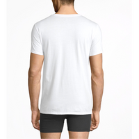 Beneath Undershirt Plan