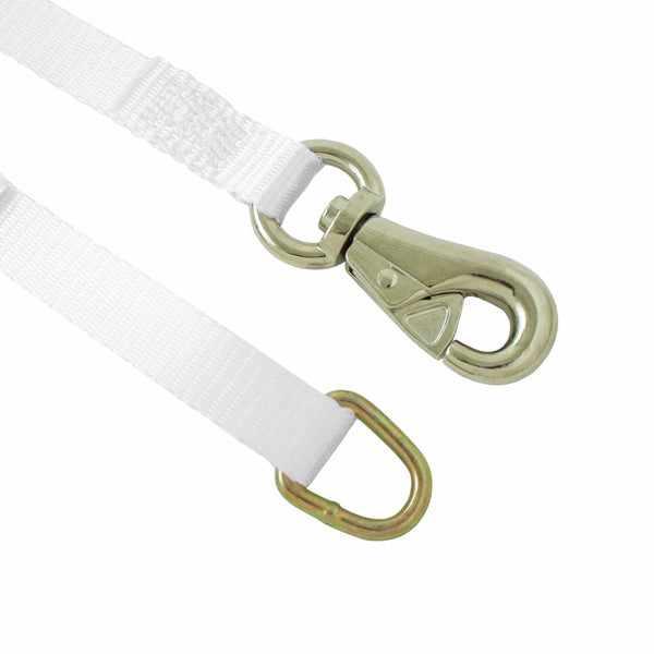 1 Inch Cam Buckle Tie Down with D Ring and Tent Snap Hook - Boxer Tools