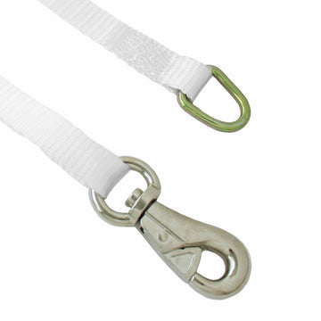 1 Inch Ratchet Tie Down with D Ring and Tent Snap Hook