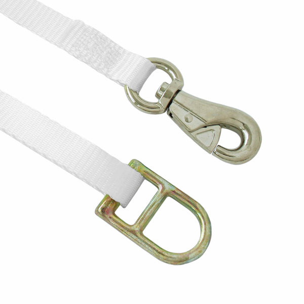 1 Inch Ratchet Tie Down with Tent Snap Hook and Double D Ring