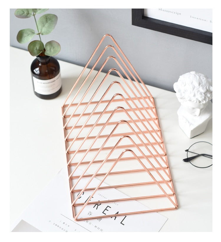 Rose Gold Bookshelf