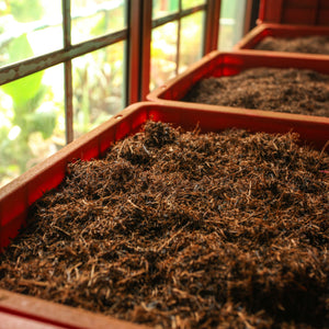 What's in an acronym? The esoteric side of tea grading.
