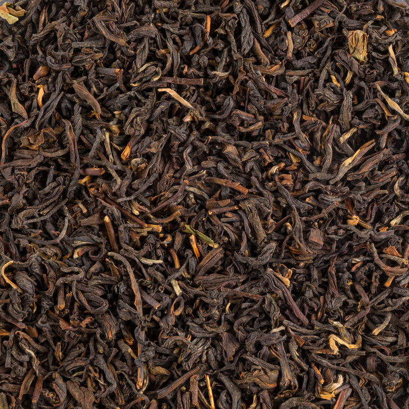 Chesser Roe | Monsoon Darjeeling