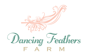 Dancing Feathers Farm