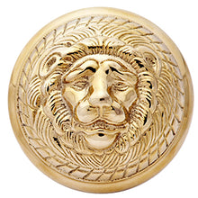 Solid Brass MGM Lion Head Spare Door Knob Set