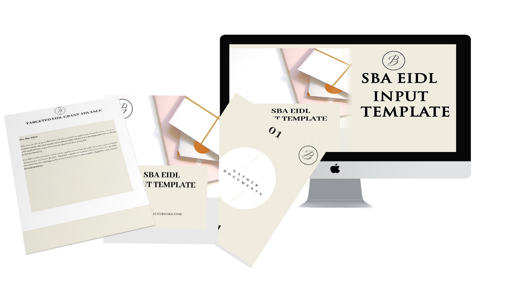 SBA PPP and EIDL Input Template
