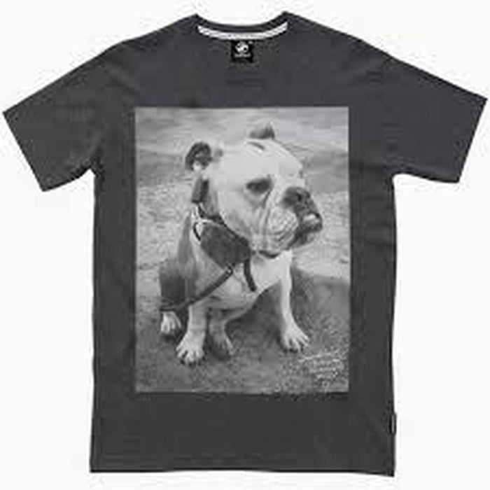 Bulldog Print Charcoal Grey Mens Tee