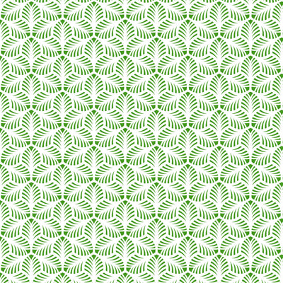 Pattern - Palm  Leaves