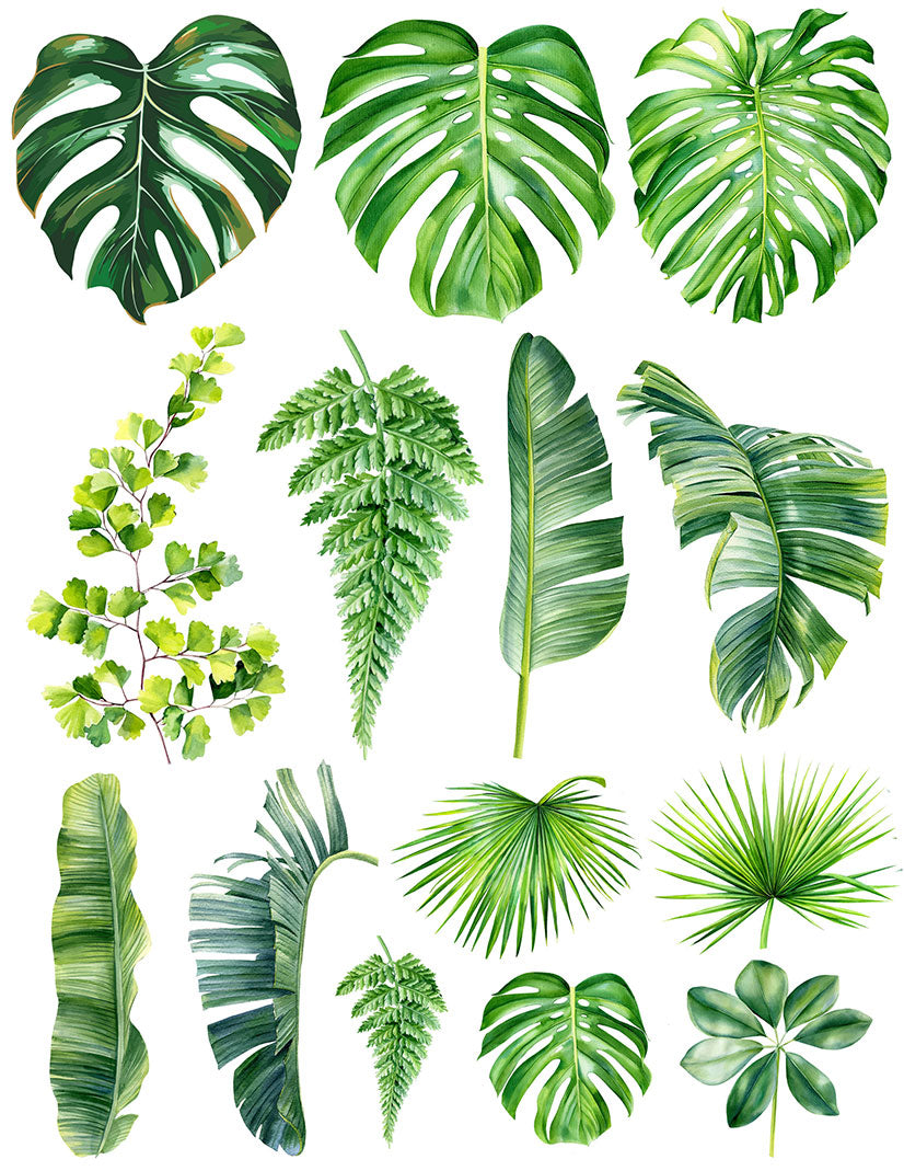 Overglaze decal - Palm Leaf