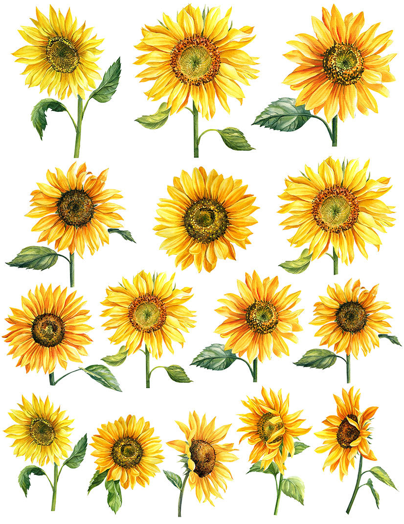 Overglaze decal - Sun Flower